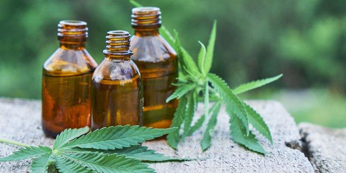 Cannabis bloom works