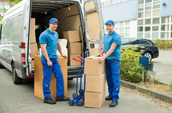 Removalist Organizations